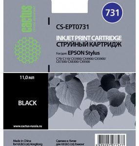 Совместимый картридж Epson T0731 черный